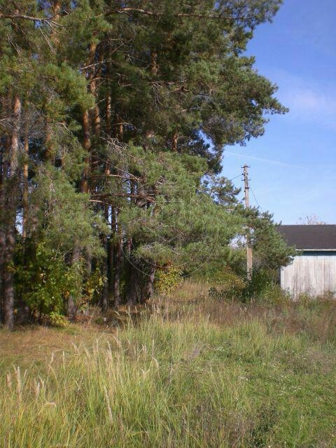 Продажа  дома п. Ключище, СНТ Мечта, ул Центральная, Верхнеуслонский рйон, 21 м² (миниатюра №2)